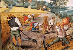 Manual labour - Peasants harvesting crops, by Flemish artist Pieter Brueghel, 17th century