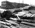 Piles of railroad ties (CURTIS 999).jpeg