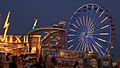 Pima County Fair 2.jpg