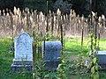 Pioneer cemetery Bale Grist Mill SHP.jpg