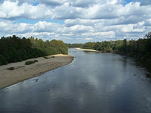 Choctawhatchee River - Near Pittman, Holmes County, Florida