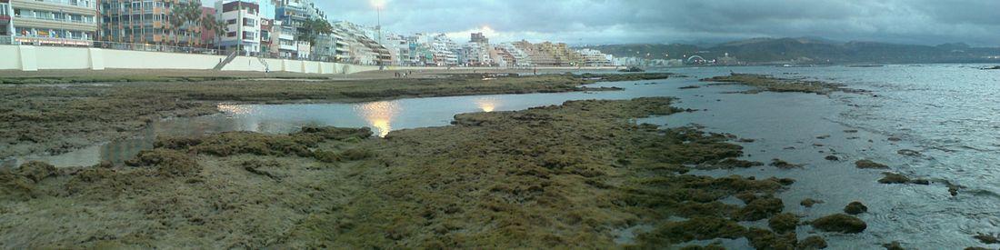 Playa De Las Canteras Wikipedia La Enciclopedia Libre
