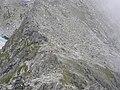 Polski Grzebien, widok ze szlaku na Mala Wysoka.jpg