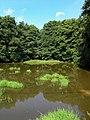 Postupice, Jemniště, lower pond.jpg