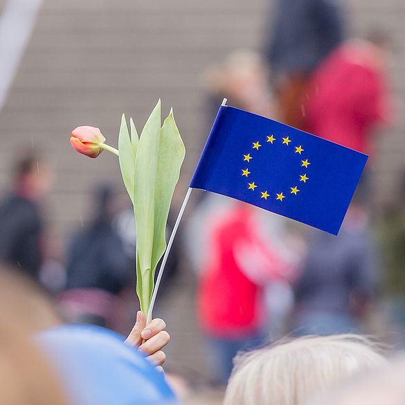 PulseOfEurope Cologne 2017-02-19-9925.jpg