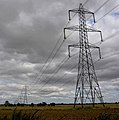 Pylons, pylons and more pylons. - geograph.org.uk - 537276.jpg