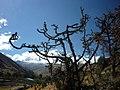 Quebrada Pariac - panoramio (2).jpg