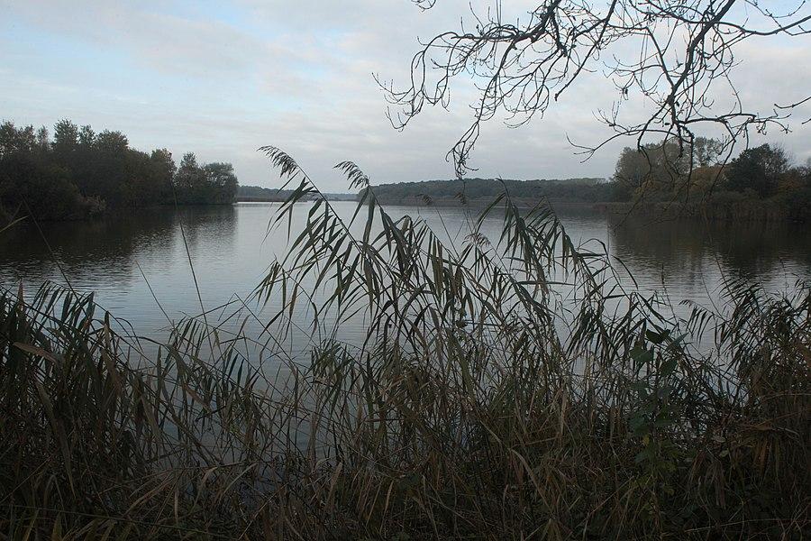 RNN de l'étang de la Horre.
