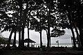 Radha nagar beach,Havlock island,Andaman - panoramio (1).jpg