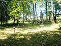 Radocyna, cmentarz wojenny nr 43 z I wojny światowej 1.JPG