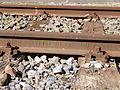 Rail ATH 1955 S 49 T.jpg