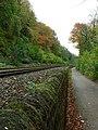 Railway Line - geograph.org.uk - 277567.jpg