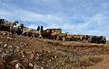 Ramat d'ovelles al poble vell de Belchit.JPG
