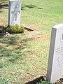 Ravenna War Cemeter 112.jpg