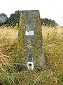 Real live trig point^ - geograph.org.uk - 207189.jpg