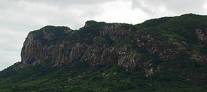Pernambuco interior forests - Pernambuco interior forest in Pedra Talhada Biological Reserve, Brazil.