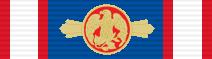 Richard C. Holbrooke Award for Diplomacy ribbon
