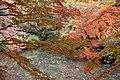 Rikugi-en 2008-11-29 (3267887813).jpg