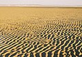 Ripples in the sand - geograph.org.uk - 484175.jpg