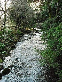 River Almond - geograph.org.uk - 1117296