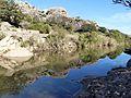 River Hozgarganta , Jimena - Flickr - gailhampshire.jpg