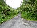 Road junction, Glengarriff Forest - geograph.org.uk - 263376.jpg