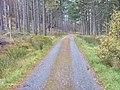 Road to Inverwick - geograph.org.uk - 276840.jpg