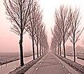 Road to Purmerend - Flickr - tinken.jpg