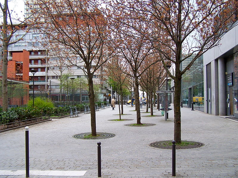 Fichier:Rue Fernand-Braudel.JPG
