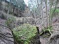 Rueti batzberg nordwestcouloir01.jpg