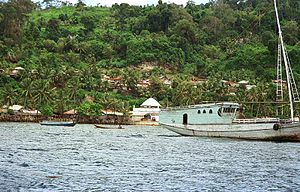Run (island) - A view of the coast
