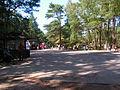 Słowiński National Park2012 36.JPG