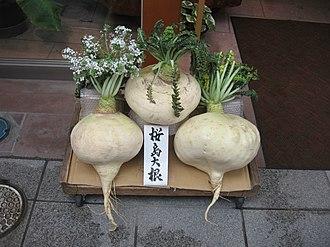 Daikon - Sakurajima radishes