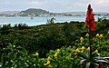 Saldana - panoramio.jpg