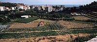 San lorenzo1 wiki.jpg