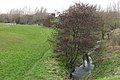 Santry River, Kilmore, Dublin 17 - geograph.org.uk - 365681.jpg