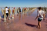Sasyk-Sivash is a salt lake in Crimea (1).jpg