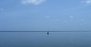 Scenes fom Vembanad lake en route Alappuzha Kottayam61.jpg