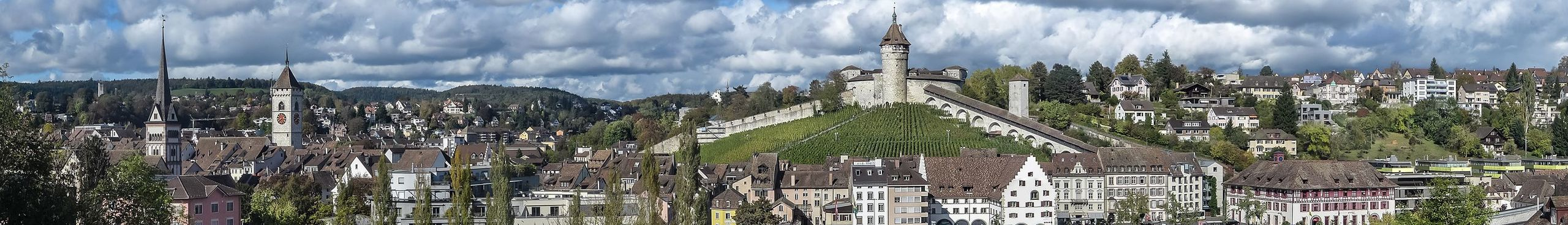 Schaffhausen Travel guide at Wikivoyage