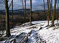 Schlebuscher Berg 2009.jpg