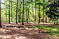 Scoutcentrum Buitenzorg Baarn - panoramio (13).jpg