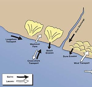 Sedimentary budget - Diagram of accretion and erosion of sediments in a coastal system. Black arrows indicate accretion, and white arrows indicate erosion.