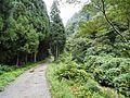 Sennagahara, Toyama, Toyama Prefecture 939-0000, Japan - panoramio.jpg