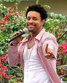 Shaggy discography discography