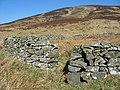 Sheep fank - geograph.org.uk - 375851.jpg