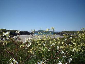 Sherkin Island - Sherkin Island Beach, the Cow Strand