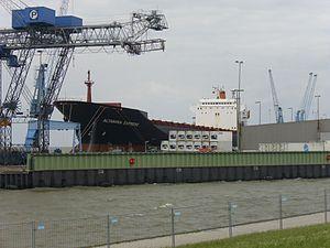 Ship Altamira Express (1).jpg