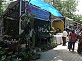 Shop selling from Lalbagh flower show Aug 2013 8747.JPG