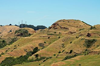 Robert Sibley Volcanic Regional Preserve - Round Top, an extinct volcano at Sibley Volcanic Regional Preserve