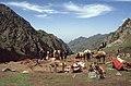 Silk Road 1992 (4367429321).jpg
